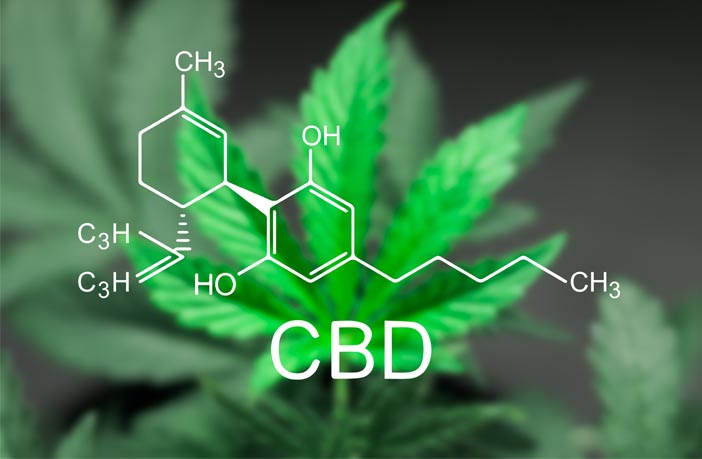 Cannabidiol induces a rapid and long-lasting antidepressant effect in rodent model of depression – PsyPost